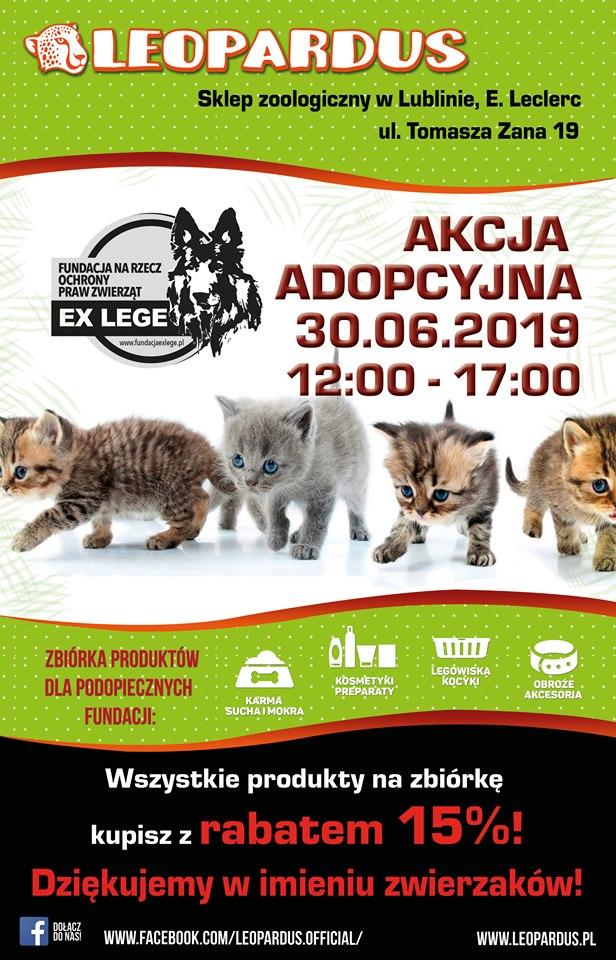 leopardus2019