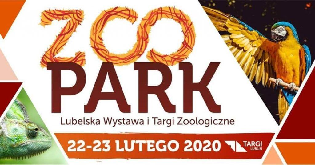 targi2020
